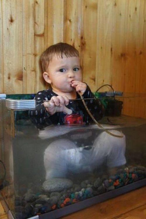 Fish Tank Kid