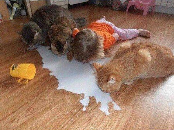 Kid Sipping Milk