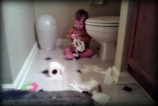 Toilet Paper Eater