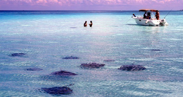 Cayman Islands Illegal Offshore Account
