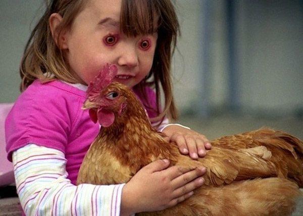 Chickeneyes