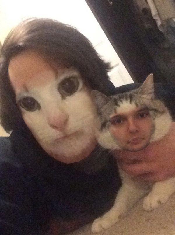 Cat Swap