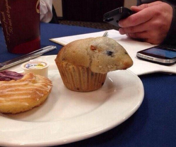 Delicious Rat Muffin