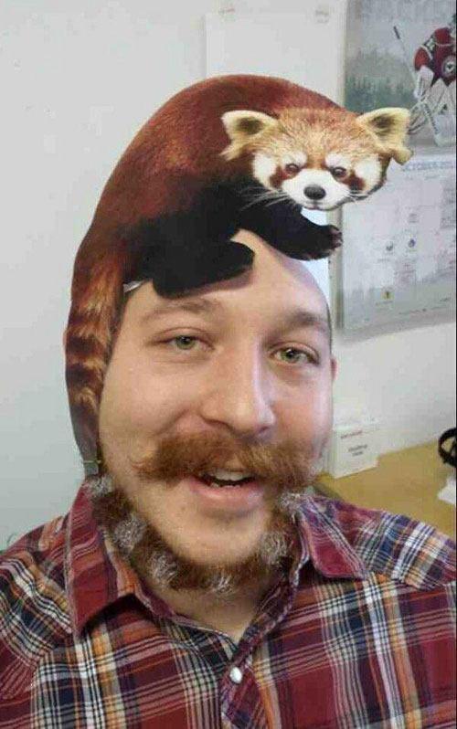 Raccoon Beard