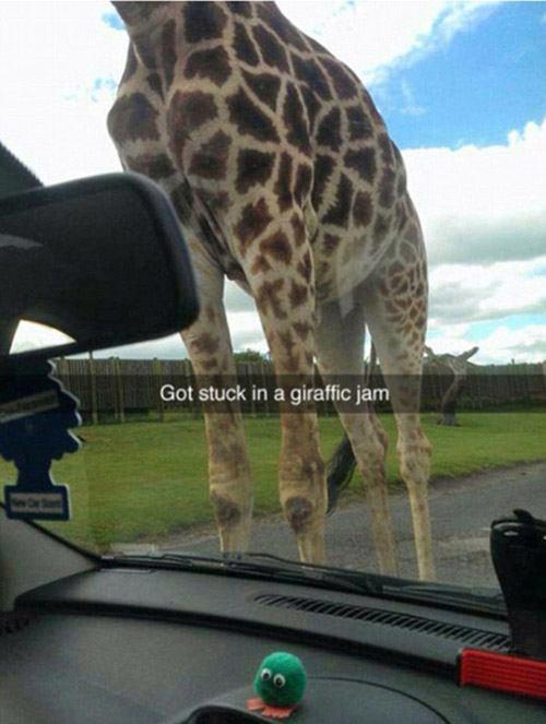 Snapchat Puns