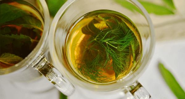 Disgusting Remedies Herb Tea