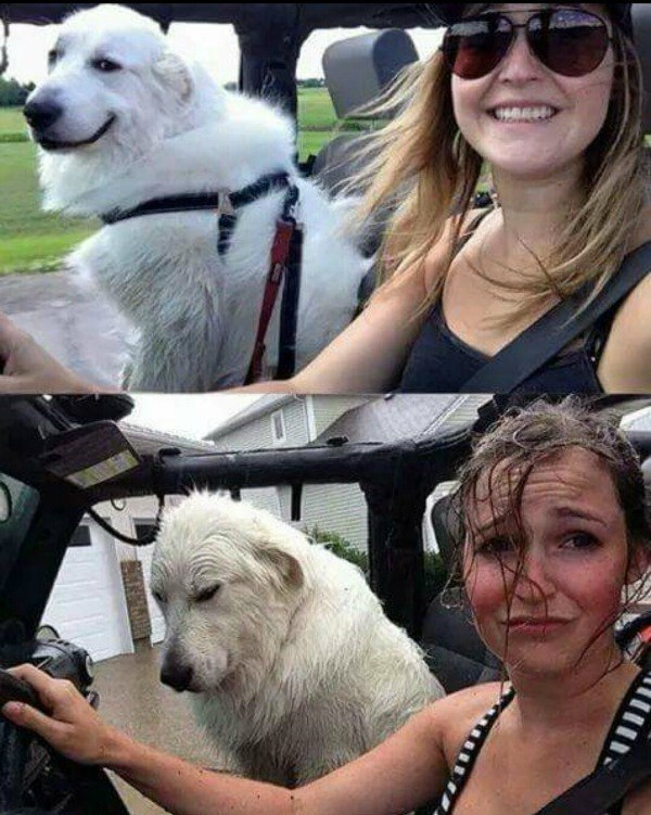 Driving In Jeep