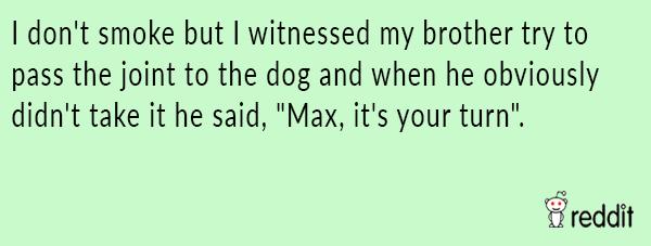 Max Take A Hit