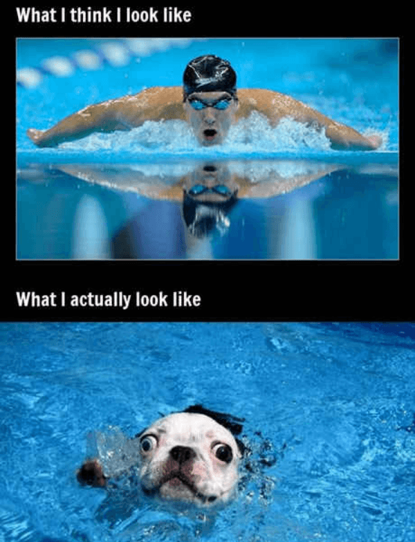 Swimming Expectations Vs Reality