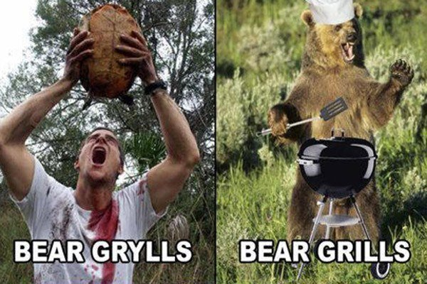 Bear Grylls Namepun