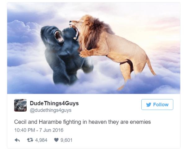 Cecil And Harambe