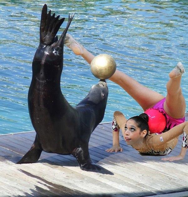 Gymnasts Pose Sear