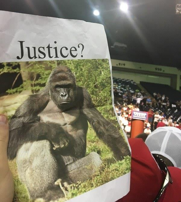Justice For Harambe