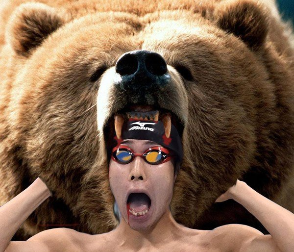 Kosuke Hagino Swim Cap Bear Attack