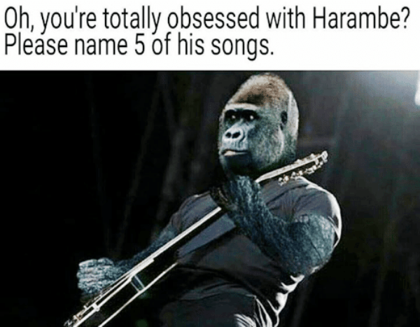 Name 5 Songs