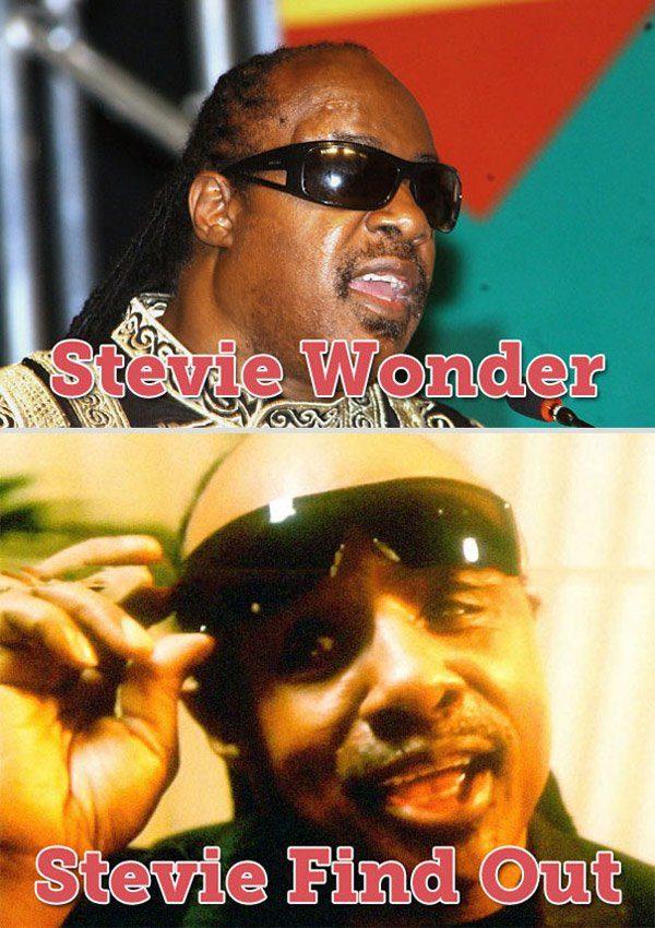 Stevie Wonder Pun