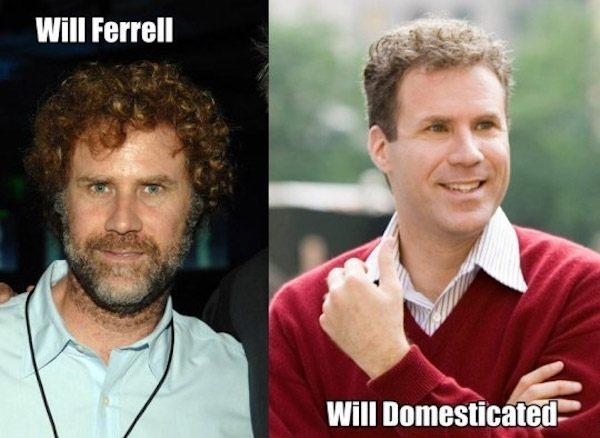 Will Ferrell Pun