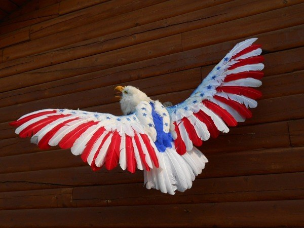 America Eagle Taxidermy Fails
