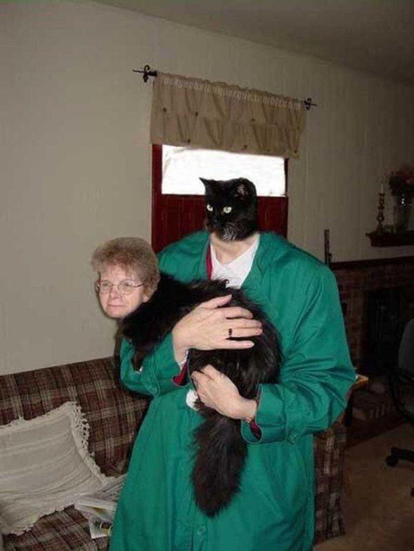 Cat And Oldlady