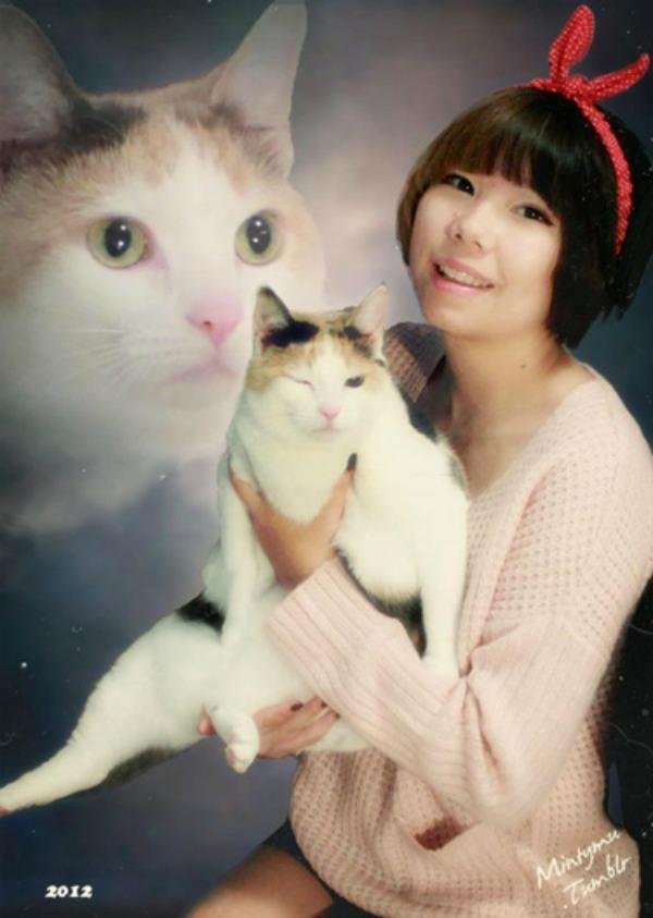 Cat Senior Photo