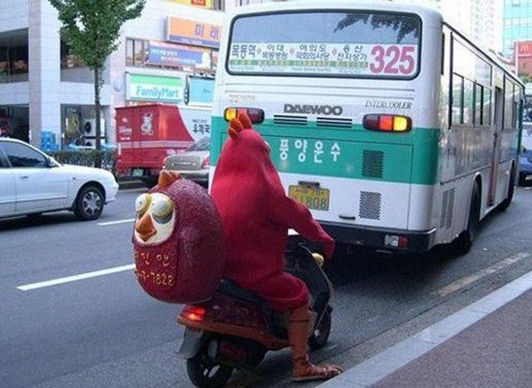 Chicken Costume Delivery