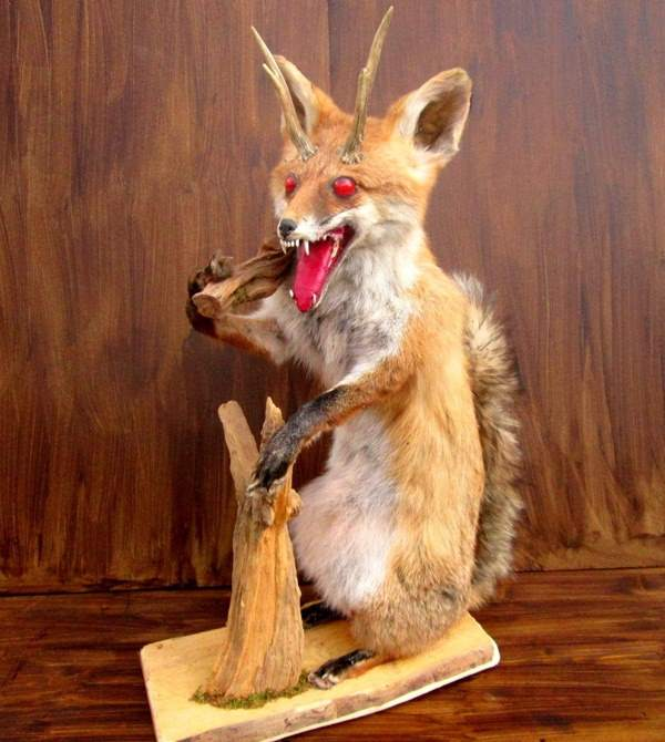 42 Funny Taxidermy Fails Just Waiting To Creep Into Your Nightmares