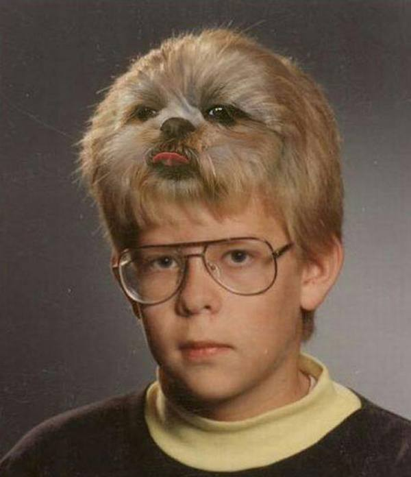 Dog Head Kid Dumb Photoshops