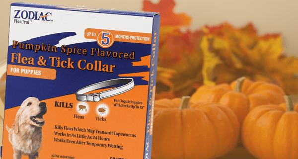 Fall Flea Collar[1]