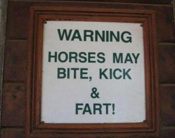 Fart Horse