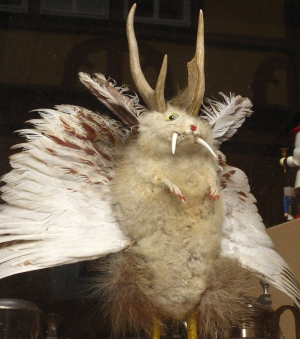 Flying Rabbit Devil