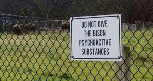 Funny Weird Signs