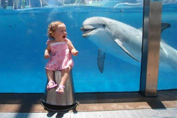 Kid Scared Of Dolphin