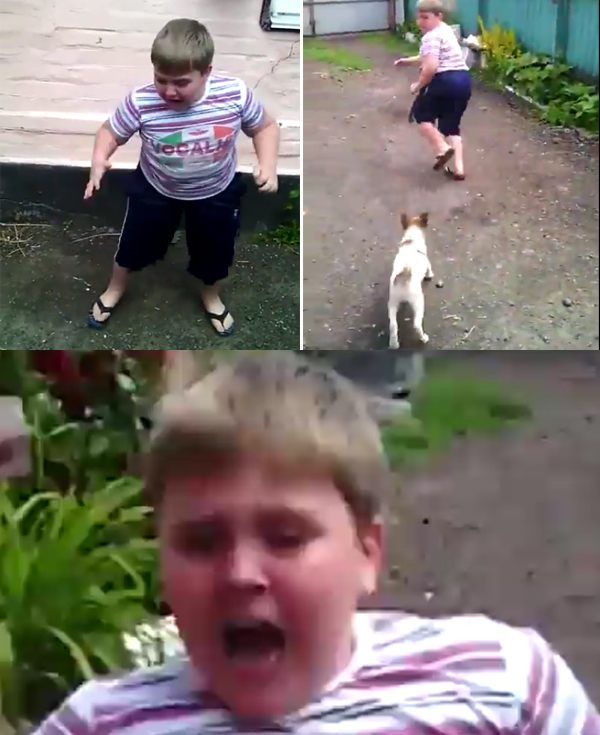 Kid Scared Of Puppy