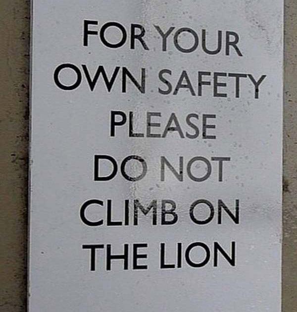 No Lion Climbing