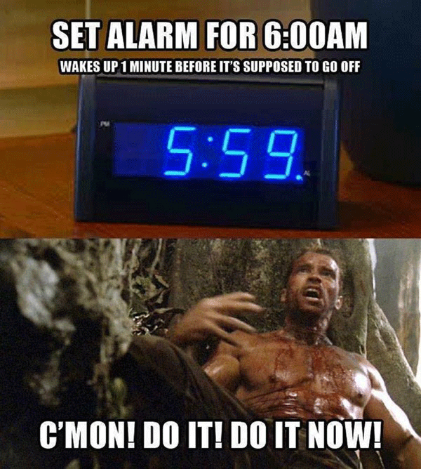 Arnold Waking Up Alarm