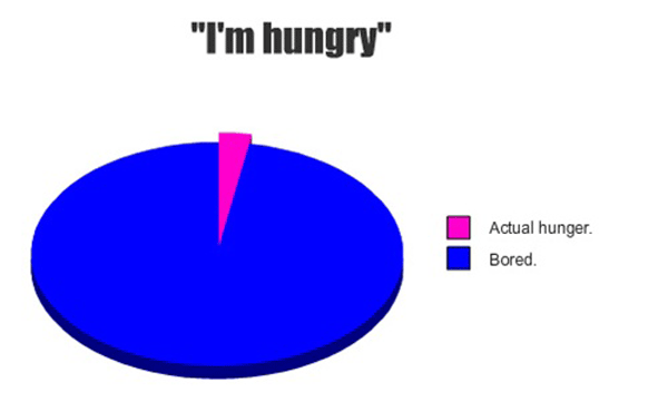Hunger Pie Chart