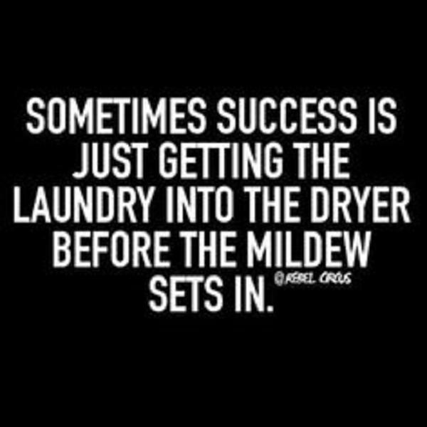Laundry Dryer Mildew