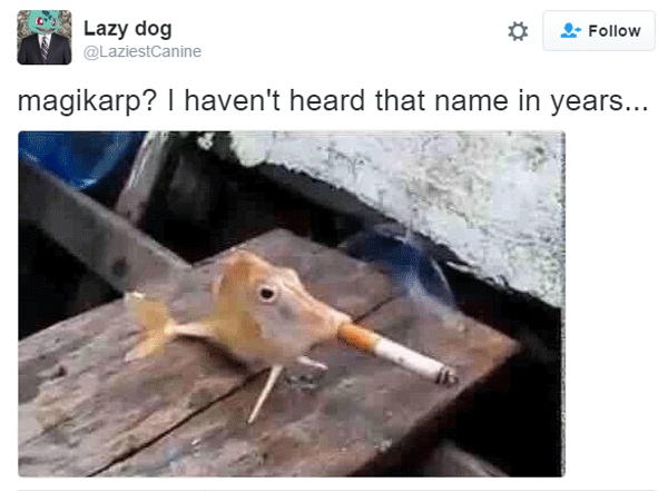Magikarp Name In Years