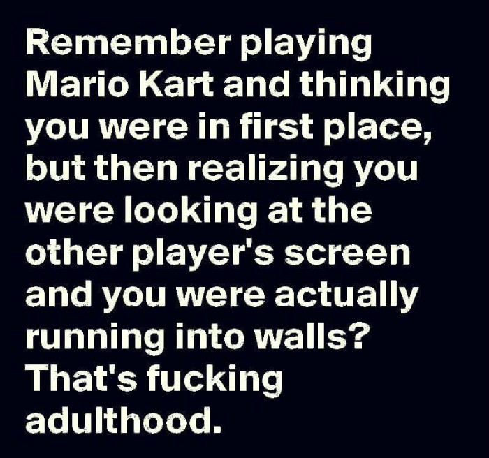 Mariokart Adulting