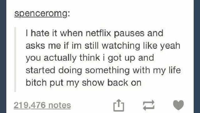 Netflix Is Life