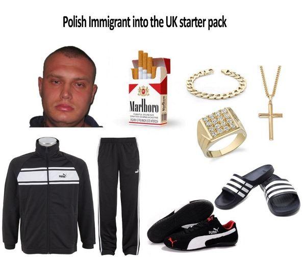 Polish Immigrant Starter Pack