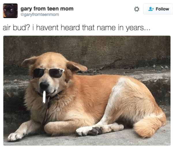 Retired Air Bud