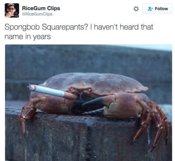 Sponge Bob Crab Smoking