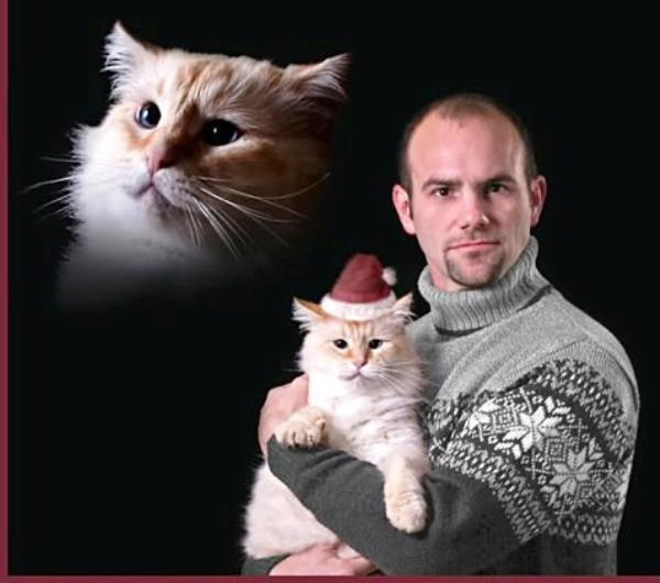 Awkward Christmas Cards Cat Mas