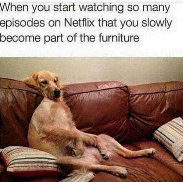 Become The Furniture Funny Netflix Memes