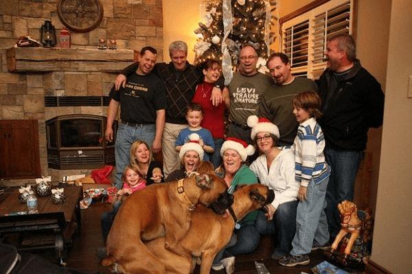 Dogs Ruin Christmas Photo