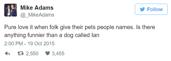 Dogs With Human Names