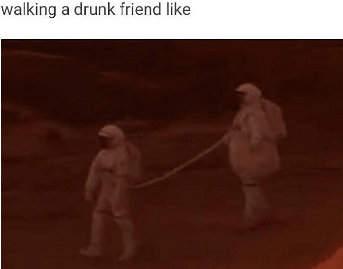 Drunk Partners True Partners