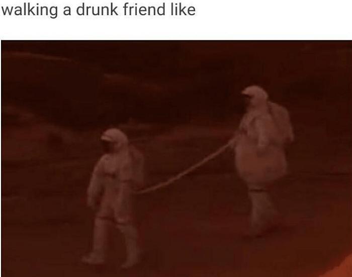 Drunk Partners True Partners