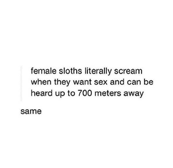 Female Sloths Scream